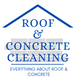 Roof And Concrete Cleaning